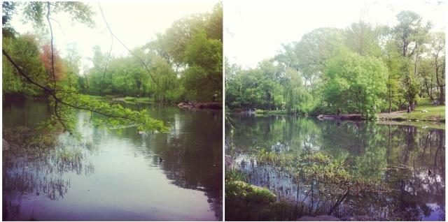 centralpark_thepool