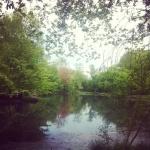 centralpark_thepool03